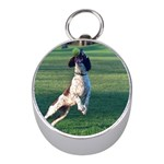 English Springer Catching Ball Mini Silver Compasses Front