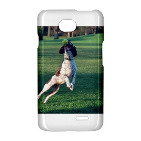 English Springer Catching Ball LG Optimus L70