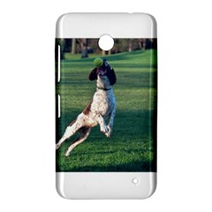 English Springer Catching Ball Nokia Lumia 630