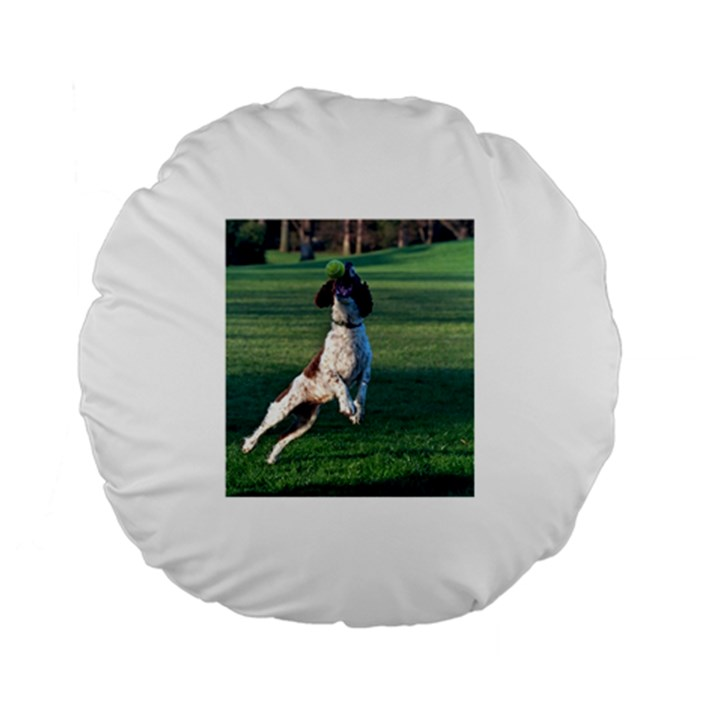 English Springer Catching Ball Standard 15  Premium Flano Round Cushions