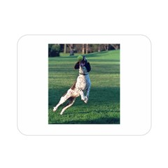 English Springer Catching Ball Double Sided Flano Blanket (Mini)