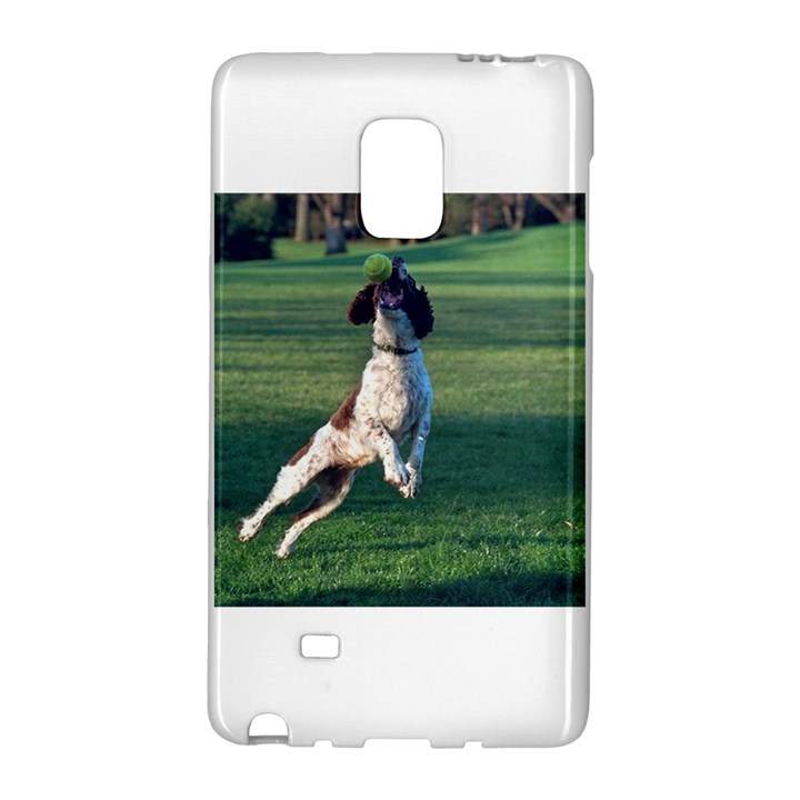 English Springer Catching Ball Galaxy Note Edge