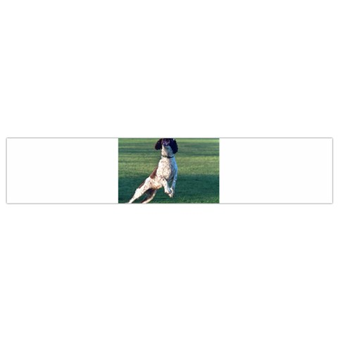 English Springer Catching Ball Flano Scarf (Small)