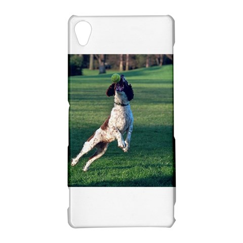 English Springer Catching Ball Sony Xperia Z3