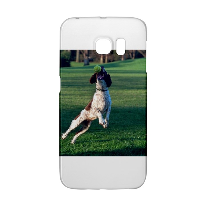 English Springer Catching Ball Galaxy S6 Edge