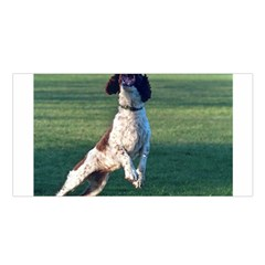 English Springer Catching Ball Satin Shawl