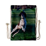 English Springer Catching Ball Drawstring Bag (Small) Back