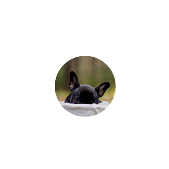 French Bulldog Peeking Puppy 1  Mini Magnets