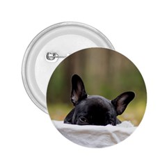 French Bulldog Peeking Puppy 2.25  Buttons