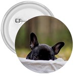 French Bulldog Peeking Puppy 3  Buttons Front