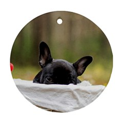 French Bulldog Peeking Puppy Ornament (round)