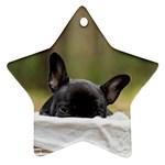 French Bulldog Peeking Puppy Ornament (Star)  Front