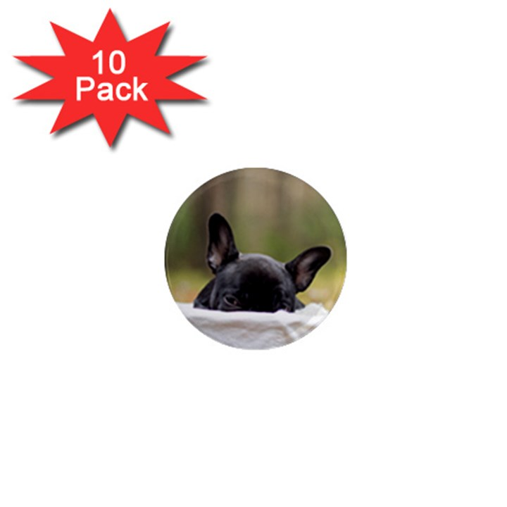 French Bulldog Peeking Puppy 1  Mini Magnet (10 pack)