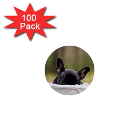 French Bulldog Peeking Puppy 1  Mini Buttons (100 pack)