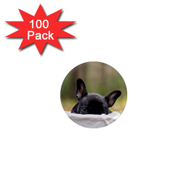 French Bulldog Peeking Puppy 1  Mini Magnets (100 pack)