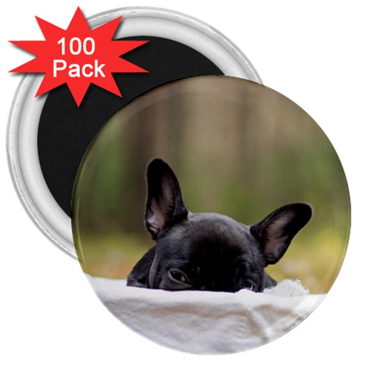 French Bulldog Peeking Puppy 3  Magnets (100 pack)