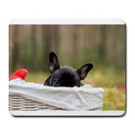 French Bulldog Peeking Puppy Large Mousepads Front
