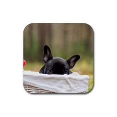 French Bulldog Peeking Puppy Rubber Coaster (Square)