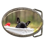 French Bulldog Peeking Puppy Belt Buckles Front