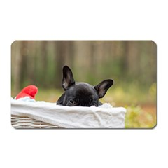 French Bulldog Peeking Puppy Magnet (Rectangular)