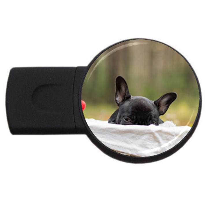 French Bulldog Peeking Puppy USB Flash Drive Round (2 GB)
