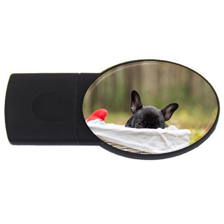 French Bulldog Peeking Puppy USB Flash Drive Oval (1 GB)