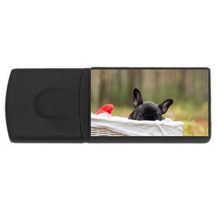 French Bulldog Peeking Puppy USB Flash Drive Rectangular (2 GB)