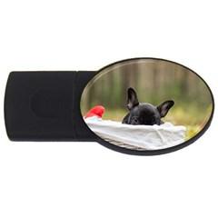 French Bulldog Peeking Puppy USB Flash Drive Oval (4 GB)