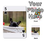 French Bulldog Peeking Puppy Playing Cards 54 Designs  Front - Spade5