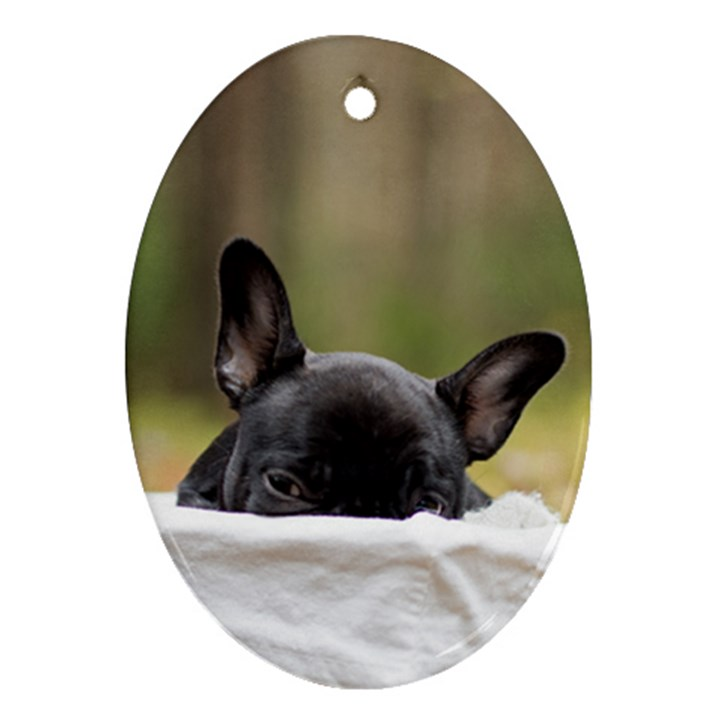 French Bulldog Peeking Puppy Oval Ornament (Two Sides)