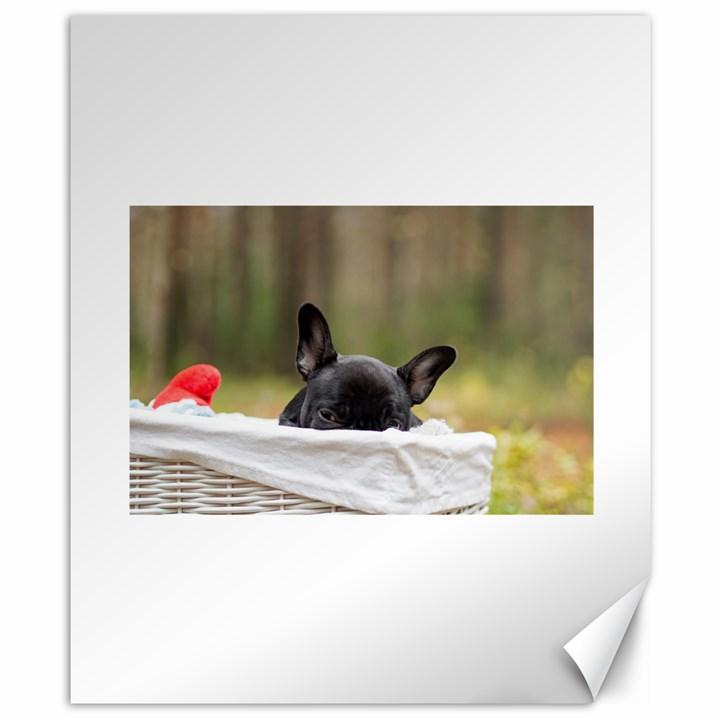 French Bulldog Peeking Puppy Canvas 8  x 10