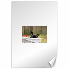 French Bulldog Peeking Puppy Canvas 12  x 18