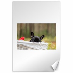 French Bulldog Peeking Puppy Canvas 24  x 36