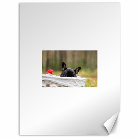French Bulldog Peeking Puppy Canvas 36  x 48