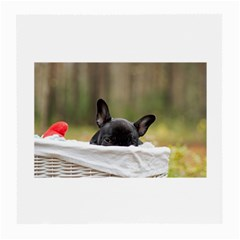 French Bulldog Peeking Puppy Medium Glasses Cloth (2-Side)