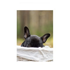 French Bulldog Peeking Puppy Memory Card Reader