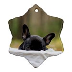 French Bulldog Peeking Puppy Ornament (Snowflake)  Front