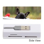 French Bulldog Peeking Puppy Memory Card Reader (Stick)  Front