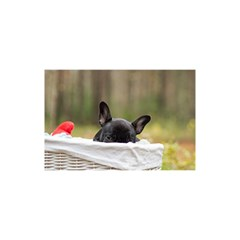 French Bulldog Peeking Puppy You Are Invited 3d Greeting Card (8x4)