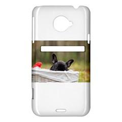 French Bulldog Peeking Puppy HTC Evo 4G LTE Hardshell Case