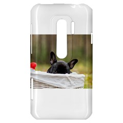 French Bulldog Peeking Puppy HTC Evo 3D Hardshell Case