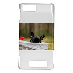 French Bulldog Peeking Puppy Motorola DROID X2