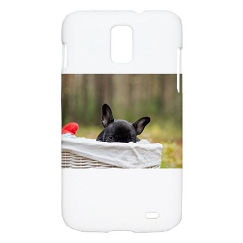 French Bulldog Peeking Puppy Samsung Galaxy S II Skyrocket Hardshell Case