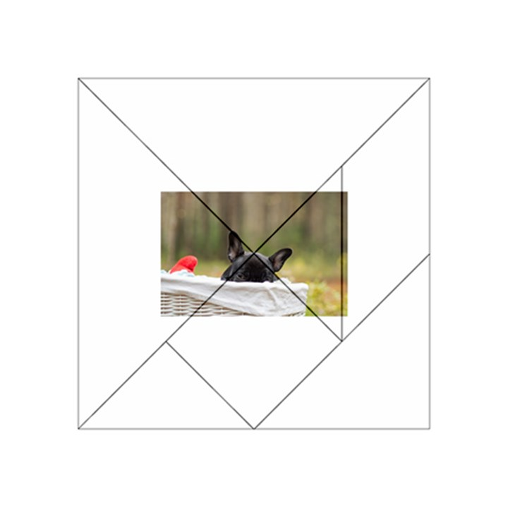 French Bulldog Peeking Puppy Acrylic Tangram Puzzle (4  x 4 )