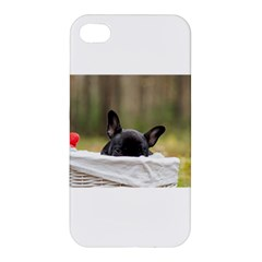 French Bulldog Peeking Puppy Apple iPhone 4/4S Premium Hardshell Case
