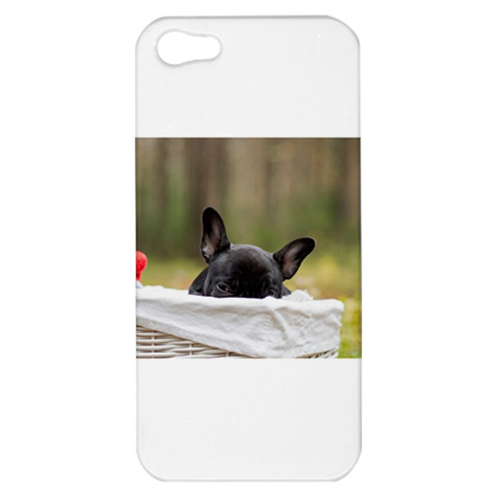 French Bulldog Peeking Puppy Apple iPhone 5 Hardshell Case