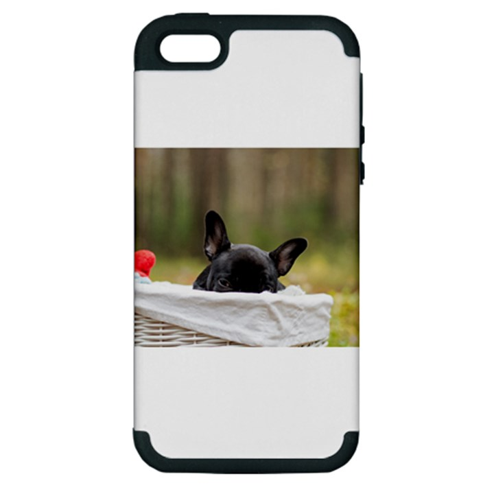 French Bulldog Peeking Puppy Apple iPhone 5 Hardshell Case (PC+Silicone)