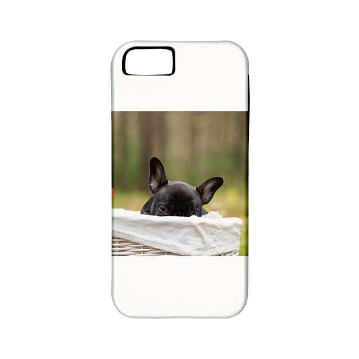 French Bulldog Peeking Puppy Apple iPhone 5 Classic Hardshell Case (PC+Silicone)