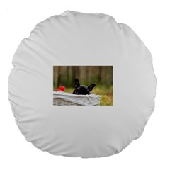 French Bulldog Peeking Puppy Large 18  Premium Round Cushions