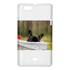 French Bulldog Peeking Puppy Sony Xperia Miro
